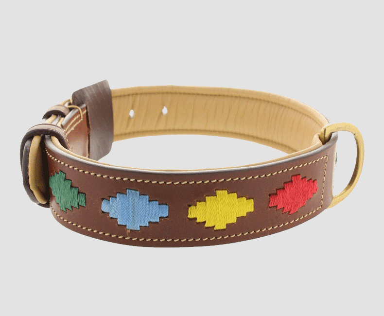 leather_dog_collar_with_pampa_aztec_accent_9826