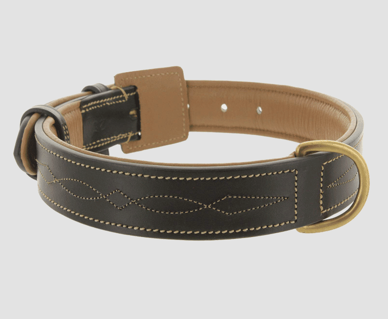leather_dog_collar_with_decorative_stitch_9828