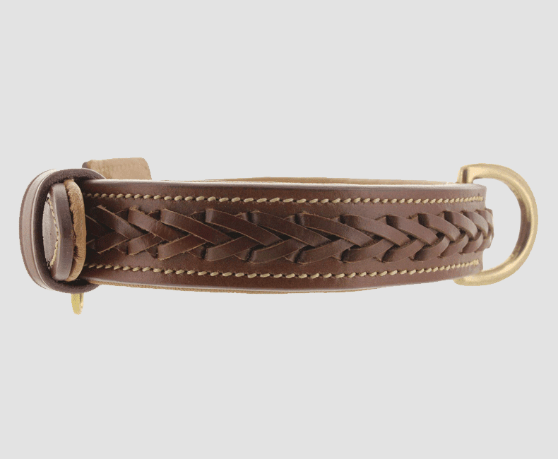 leather_dog_collar_braided