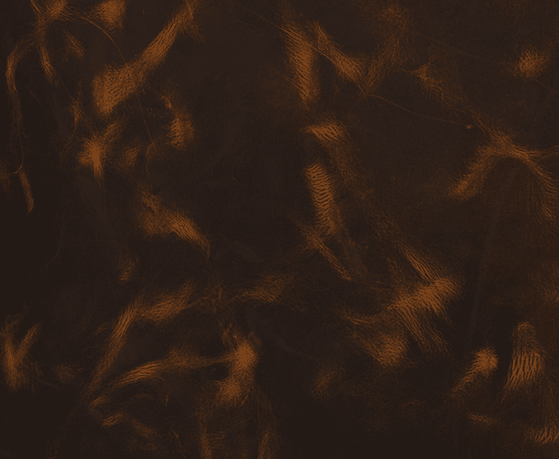 Water Buffalo Leather - Antique Waxy